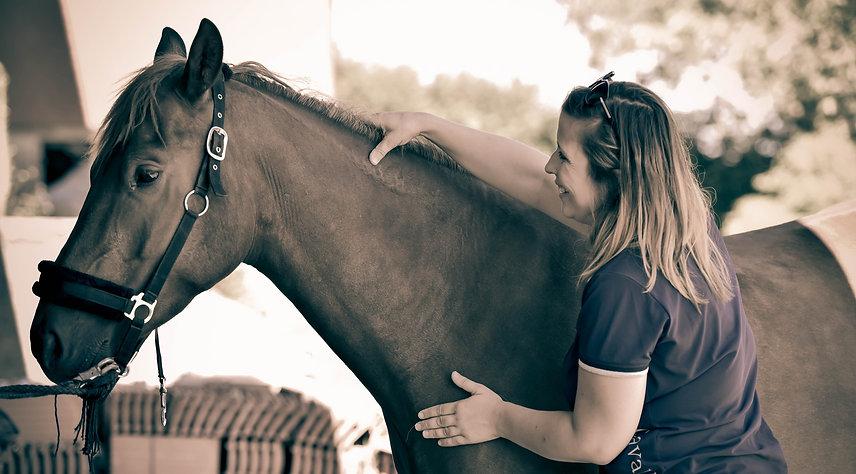 massage cheval+fribourg+suisse+muscles du cheval+détente musculaire du cheval