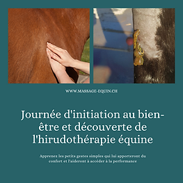 Copie de journée initiation au bien-être et soutien du cheval de sport TREC-3.png