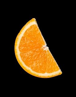 fruit_orange.png