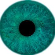 Tourquoise eyes.jpg