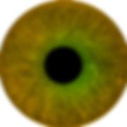 Hazel eyes.jpg
