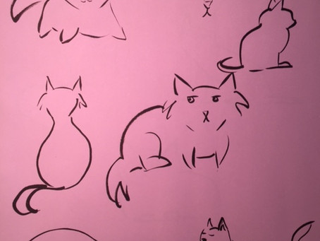 Cat Sketch Fever