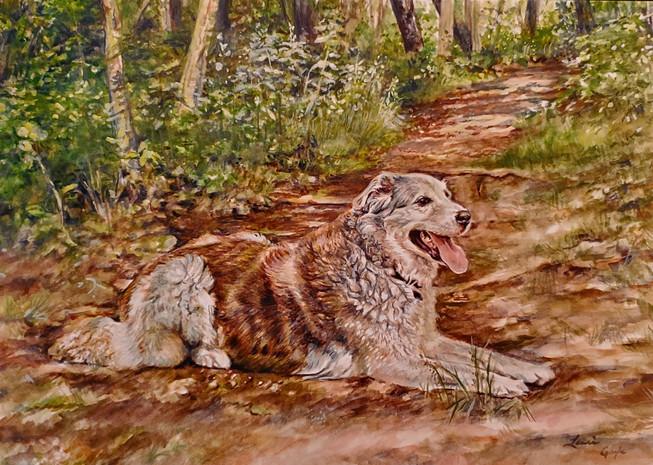Shady Path, Dog Art, watercolor.jpg