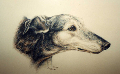 Lacy-Dog Art, Drawing.jpg