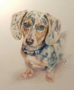 Banner-Dog Art, Drawing.jpg