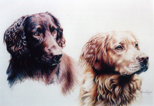 Tide and Stone-Dog Art, Drawing.jpg