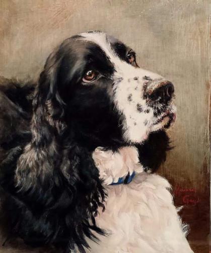 Springer-Dog Art, Painting.jpg