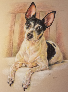 Rat Terrier-Dog Art, Drawing