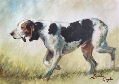 Foxhound, dog art, watercolor.jpg