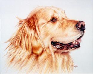 Jack-Dog Art, Drawing.jpg