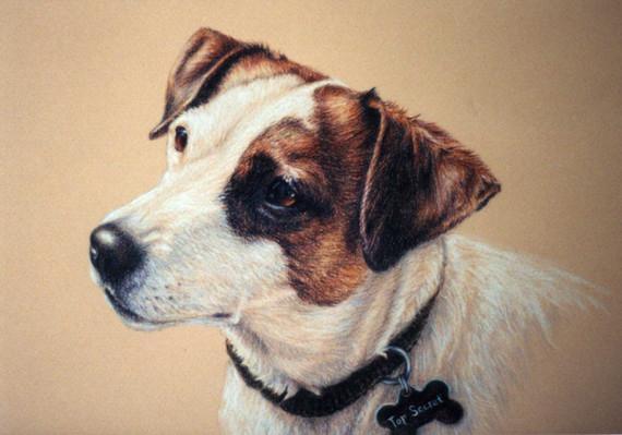 Top Secret-Dog Art, Drawing Laurie Gayle