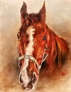 Sid-Horse-Art- Oil Painting