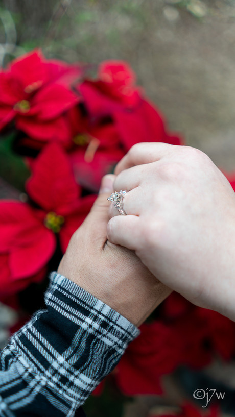 Ring 💍 and flower 🌹