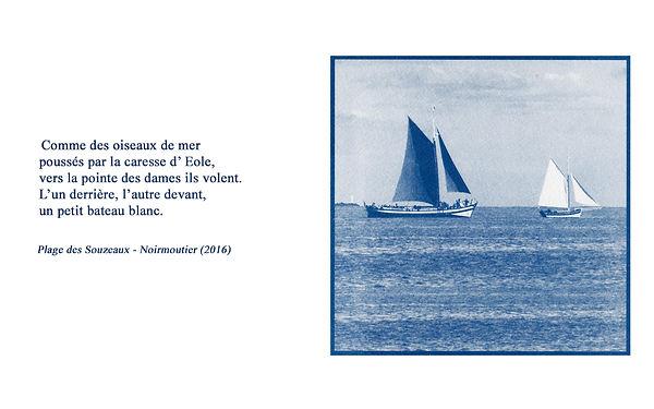Le petit bateau blanc.jpg
