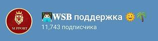 WSB-поддержка.jpg