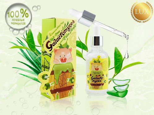 Сыворотка восстанавливающая ELIZAVECCA Ferment Filtrate 100%, 50 ml