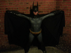 Arkham City Cosplay Costume