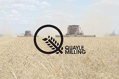 QM_harvest.jpg
