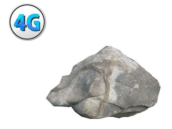ראוטר אבן סוללה לשבוע