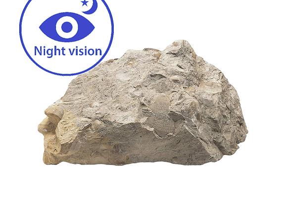 אבן לילה
