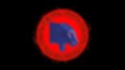 Team_Blue_Panthers_logo.png