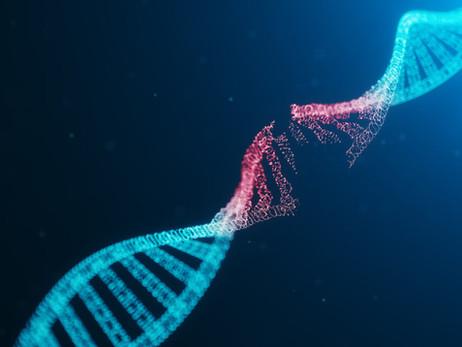 MUTACIONES GENETICAS