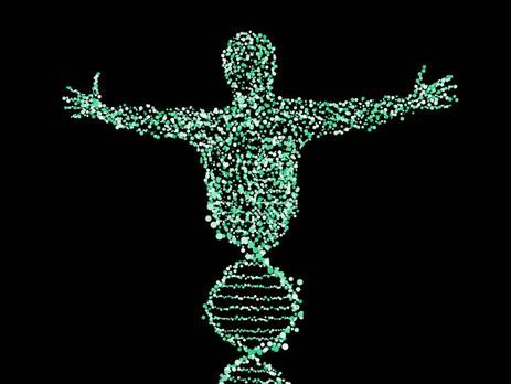 ANALISIS DEL ADN