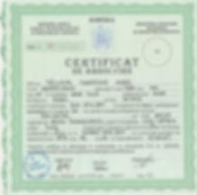 CertificatFormatorDeFormatori.JPG