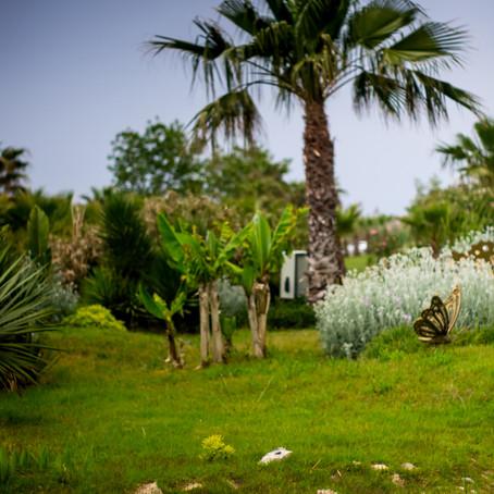 Mūsų atostogos Turkijoje
