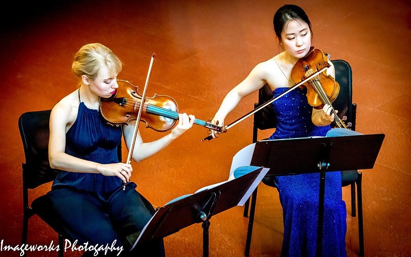 Classical Music Photography, Violin Photogaphy, Classical Music