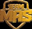 team mas logo.png