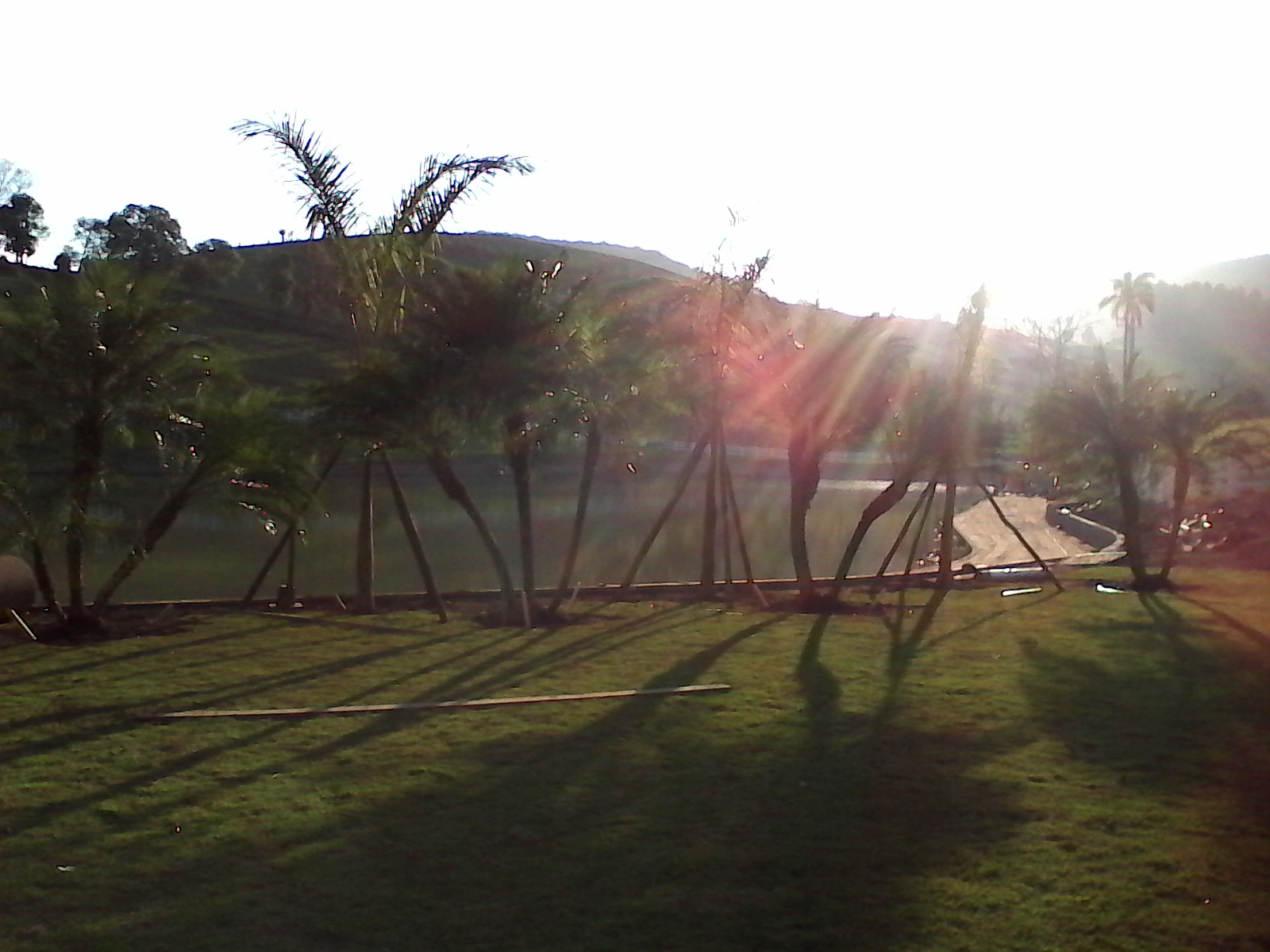 paisagismo Porto Alegre