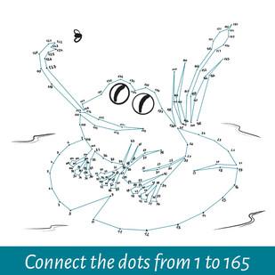 Frog dot-to-dot solved.jpg