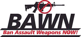 BAWN Gun.jpg