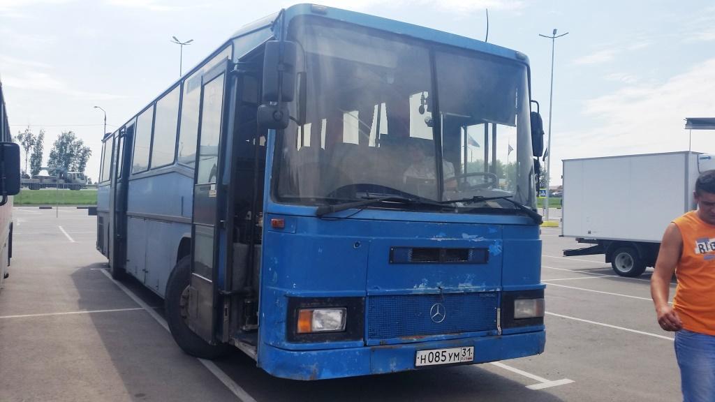 Городские автобусы: Мерседес 50 мест