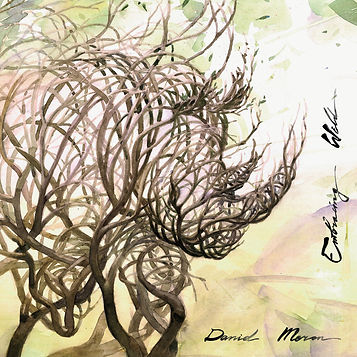 Daniel Meron Embracing Wild Front Album Cover