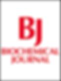 BJ_logo.png