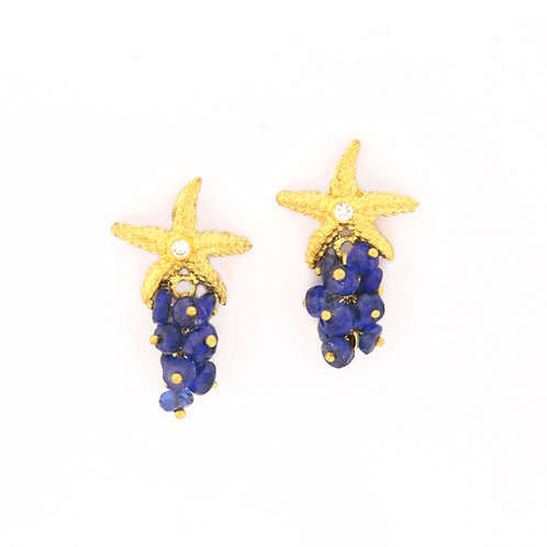 Seastar Earrings in 18k Gold with Diamonds and Sapphire Bead Clusters.