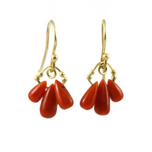 Crimson Coral