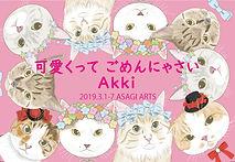 akki-01.jpg