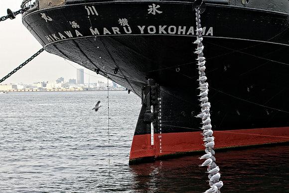 Ships with Gulls, Yokohama Japan