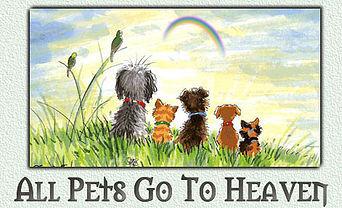 Do Animals Go to the Rainbow Bridge or Do Pets Go To Heaven?