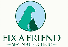 The Bow Wow Luau & The Cat's Meow® Funding Helped Open Spay/Neuter Clinic
