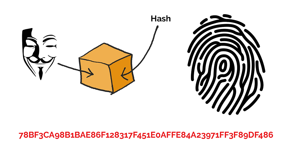 A hash is like a fingerprint and detects when blocks are tampered with.