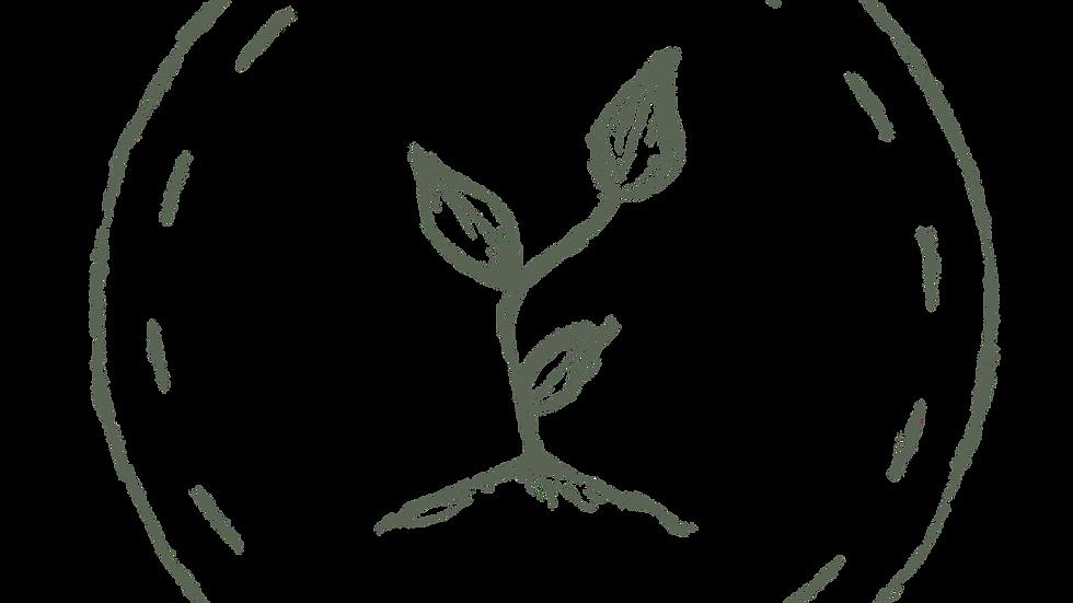 Wine Cap (king stropharia) Spawn