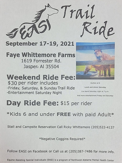 EASI Ride.jpg