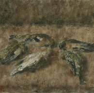 1942. Gli Uccelli Morti