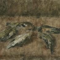 1942. Mrtve ptice