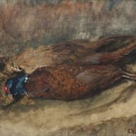 1941. Marjanski fazani