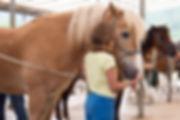 Bambina con cavallo al maneggio di cavedine